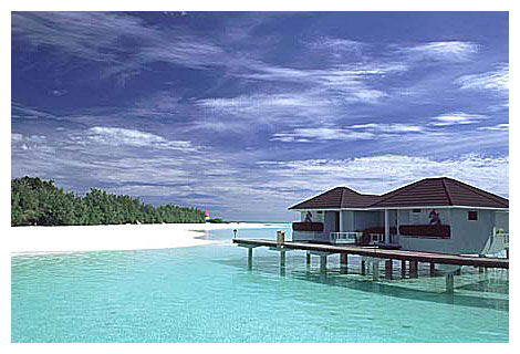 paradise-island-9.jpg